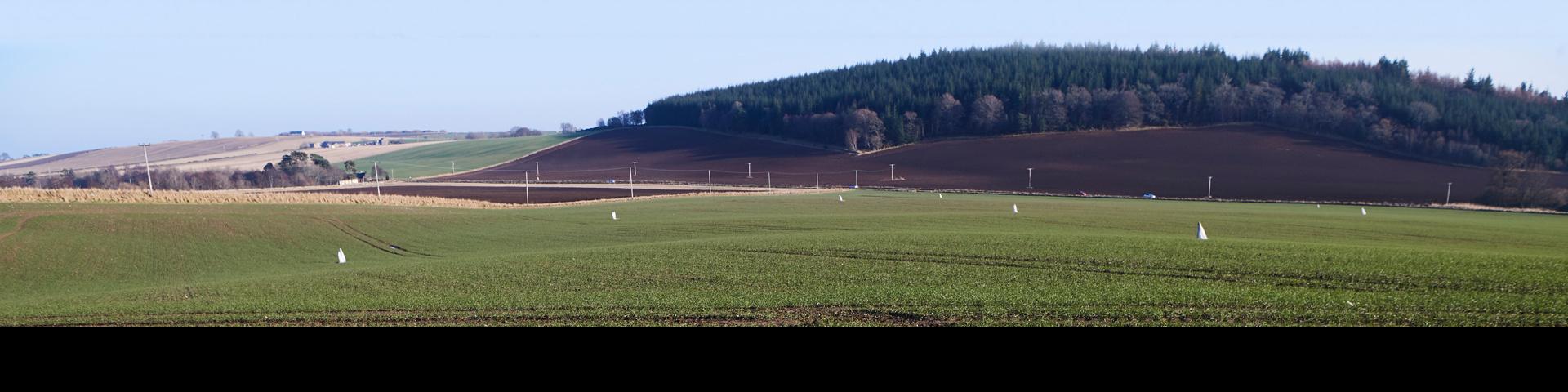Farm landscaoe