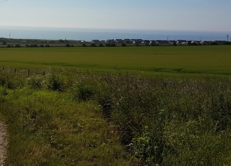 Agricultural land near Inverbervie, Angus