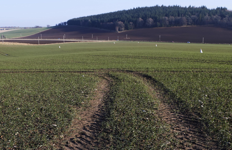 Farmland in the Black Isle with crossed by tractor tyre tracks