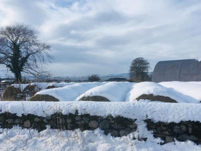 Snow-covered farm near Nigg. Credit: F Dalgetty.