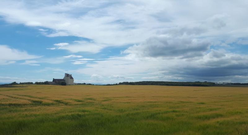 Agricultural land near Portmahomack