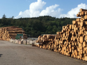 Timber stacked at Eigg Causeway ready for transport away from the island.