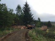 A forestry vehicle at work clearing timber on the Isle of Eigg.