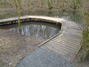 Doune Ponds - Dipping Pond walkway built by DCWG volunteers.