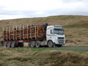 A lorry transporting timber across Eskdalemuir.